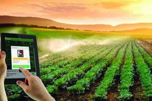 Ứng dụng IoT trong nông nghiệp tại Việt Nam